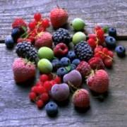 Mange fargerike bær