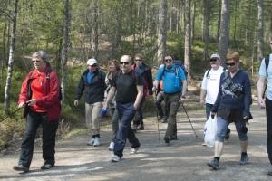 En gjeng gående på tur i skogen