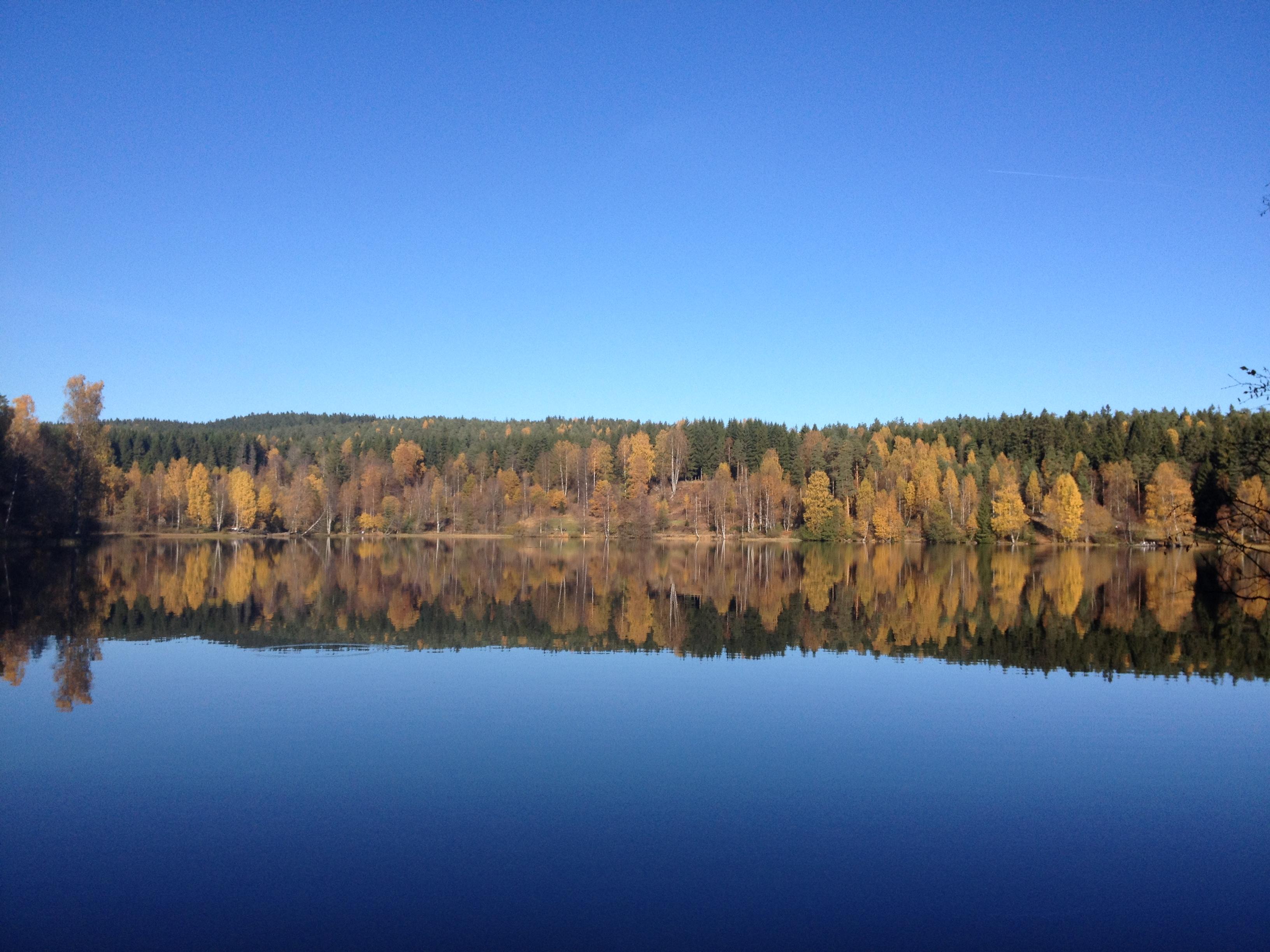 Høstbilde hvor trærne speiler seg i vannet