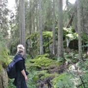 Dame i turklær i skog fylt av trær og mose