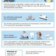 Brosjyre om automatisk frikort egenandelstak 2