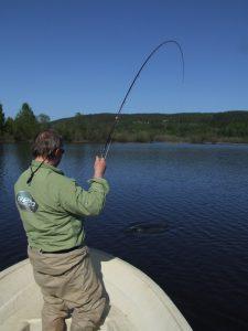 Mann fluefisker fra båt