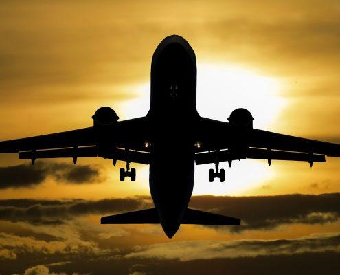 Fly i solnedgang