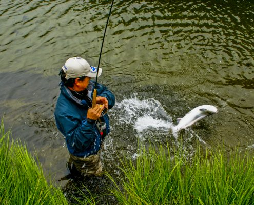 Mann står i vannet og har fått en stor laks på fluestanga