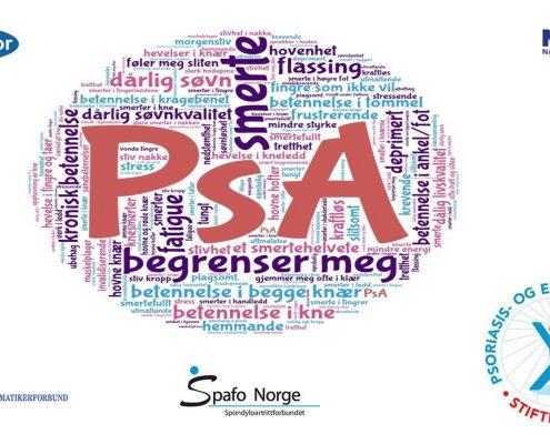 Ordskyen viser noen av ordene som respondentene benyttet om det å leve med PsA