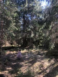 Liten jente i rosa kjole bruker pinner som gåstaver i skogen